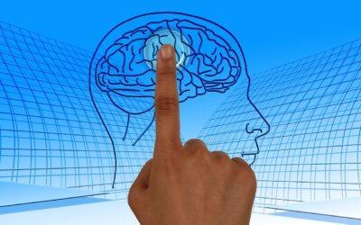 L'approche neurolinguistique (ANL) – le développement de la grammaire implicite (compétence orale)